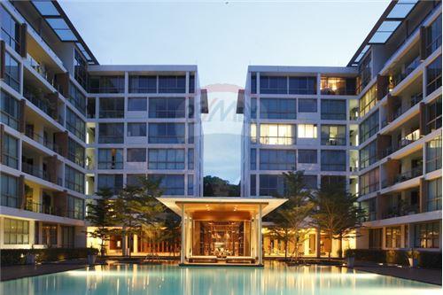 RE/MAX Executive Homes Agency's Duplex Condominium Ficus Lane Sukhumvit For Rent 1