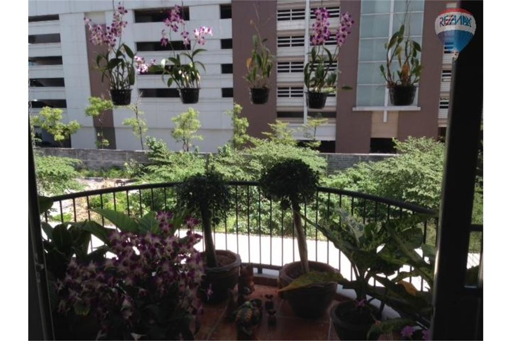 RE/MAX Properties Agency's FOR RENT GRAND PARK VIEW 1BED 35.56SQM 7