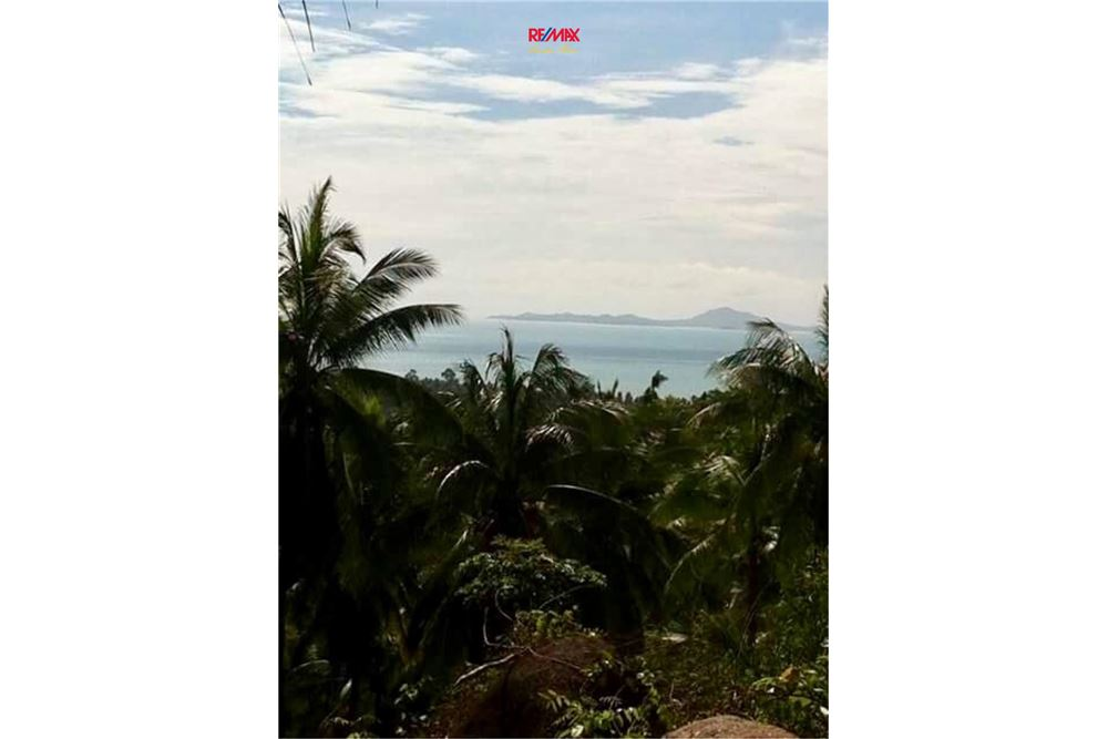 RE/MAX Executive Homes Agency's Development / Land For Sale in Koh Phangan 5