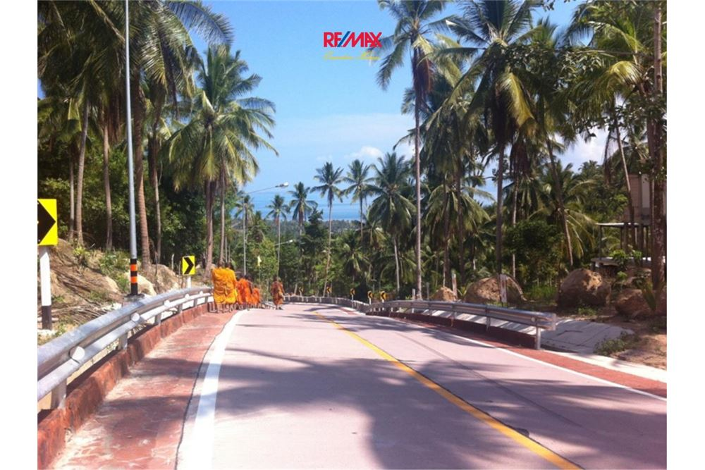 RE/MAX Executive Homes Agency's Development / Land For Sale in Koh Phangan 1