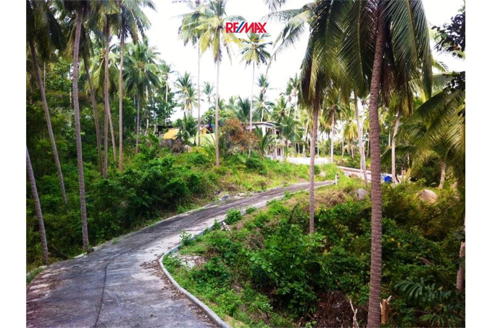 RE/MAX Executive Homes Agency's Development / Land For Sale in Koh Phangan 10