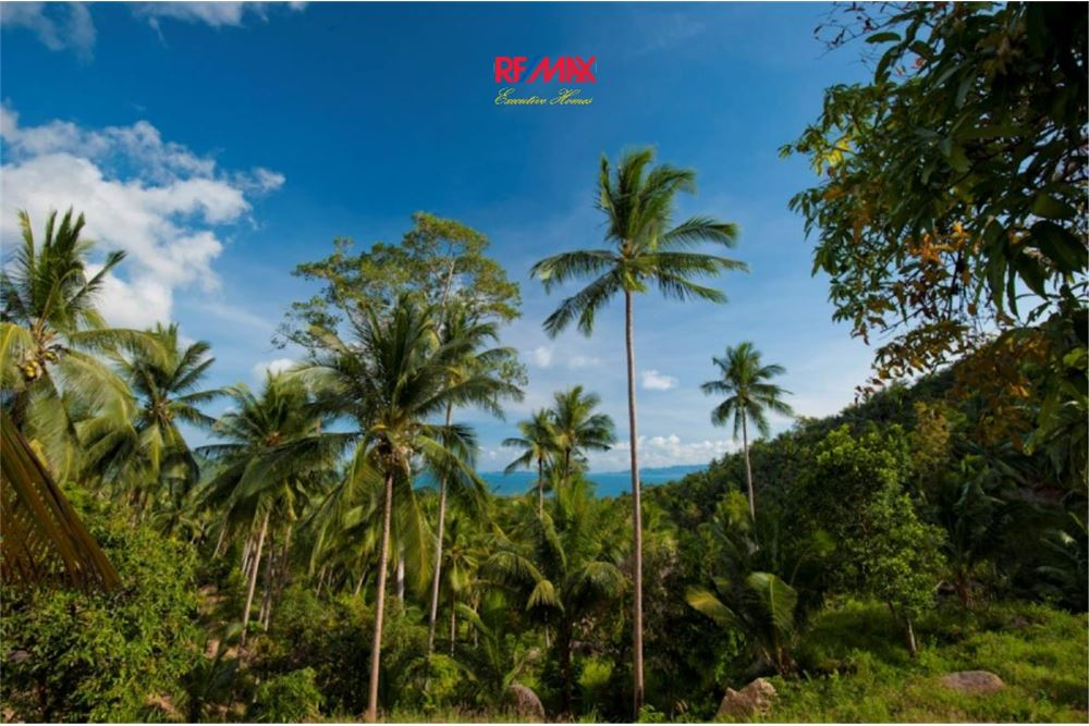 RE/MAX Executive Homes Agency's Development / Land For Sale in Koh Phangan 9